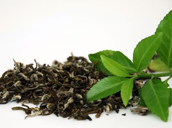 Zeleni čaj dobre